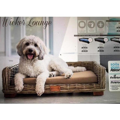 Barkley & Bella - Wicker Lounge - REPLACEMENT COCOA CUSHION & COVER - Furevables Pet Boutique