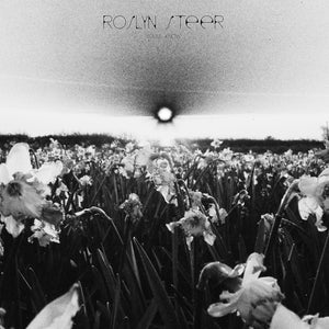 ROSLYN STEER - You'll know (Ireland 2016) GPMUSIC08LP