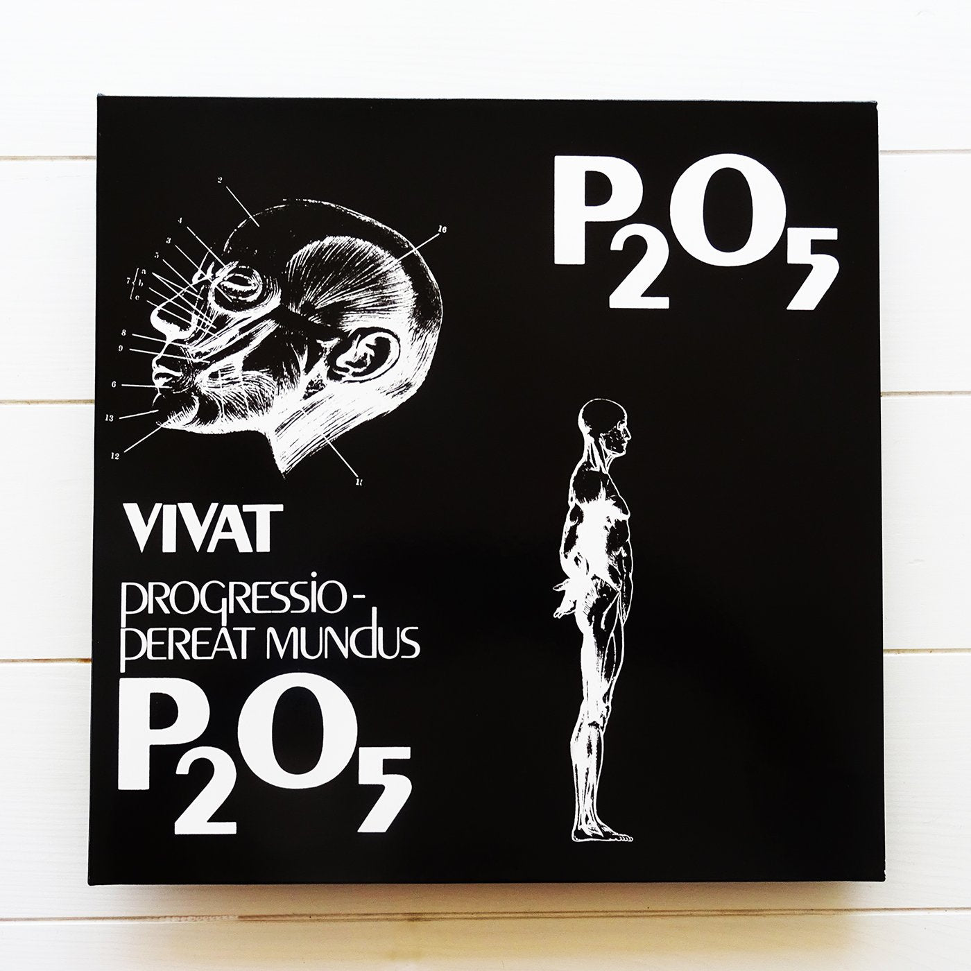 P₂O₅- Vivat Progressio Pereat Mundus-( Germany 1978) GPMUSIC07LP