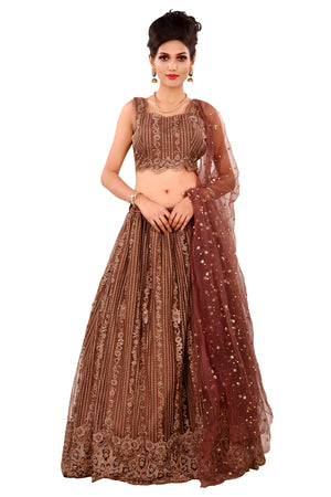 Brown Designer Lehenga featured in Net with Stones and bead work