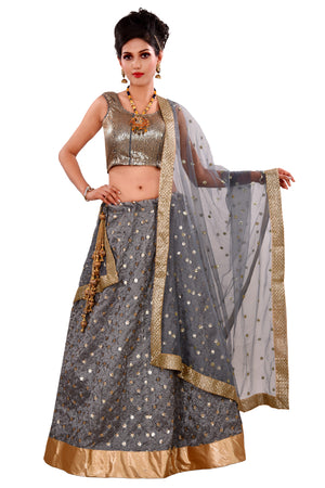 Golden and Grey Lehenga Done in Net and Tissue