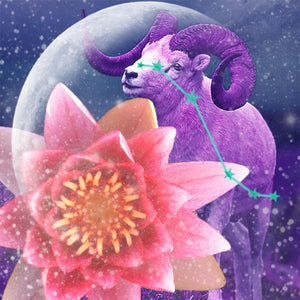 APRIL 5TH ASTROLOGY & ENERGY: NEW MOON IN ARIES
