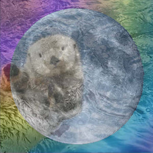 MARCH 1ST 2018 ASTROLOGY & ENERGY: FULL MOON IN VIRGO