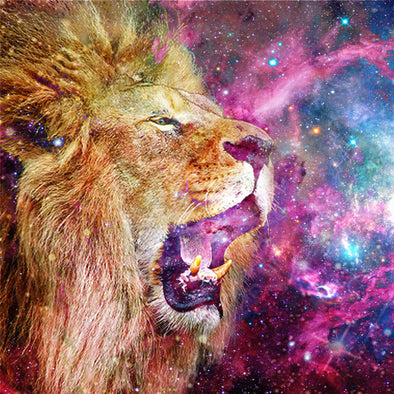 JULY 22, 2017 ASTROLOGY & ENERGY: NEW MOON IN LEO