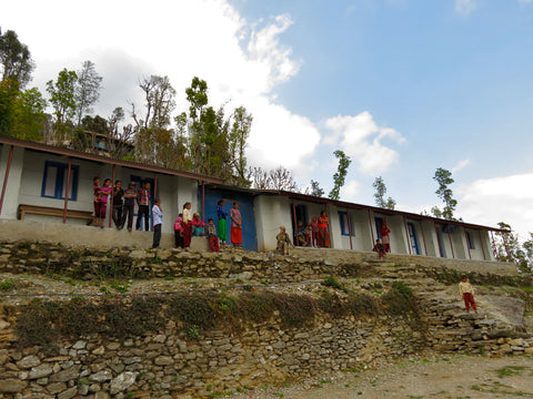 The Nerkal Basic school, pictured: teachers and students on the steps of the school that was crafted on the mountainside.