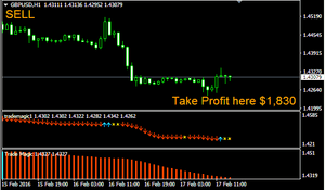 Forex Trade Magic