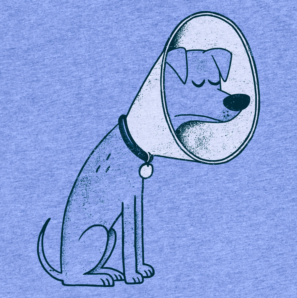 Cone of Shame tee