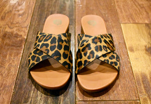 Stand Together Cheetah Slides