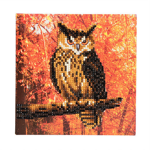 "CCK-A10. ""Autumn Owl"" Crystal Card Kit"