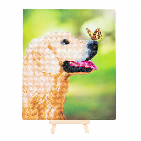 "CAM-4: ""Labrador Dog & Butterfly"" Crystal Art ""Gallery Collection"" Kit, 21 x 25cm"