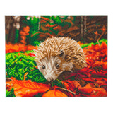 "CAK-A106L: ""Hedgehog"" Framed Crystal Art Kit, 40 x 50cm"