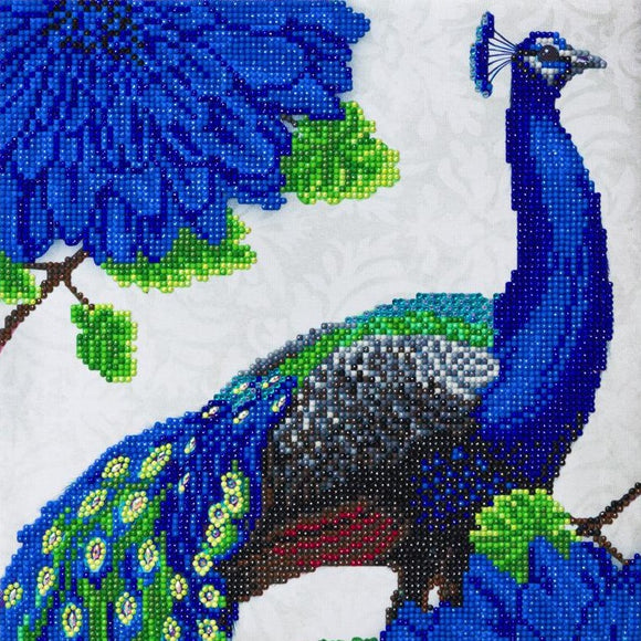 CAK-A118M: Flowering Peacock, 30x30cm Crystal Art Kit