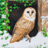 "CAK-A121M: ""Snowy Owl"" 30x30cm Crystal Art Kit"