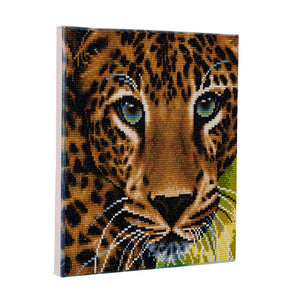 "CAK-A66: ""Leopard "" Framed Crystal Art Kit 30 x 30cm (Medium)"