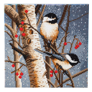 "CAK-A76: ""Woodland Sprites "" Framed Crystal Art Kit 30 x 30cm (Medium) - PRE-ORDER"