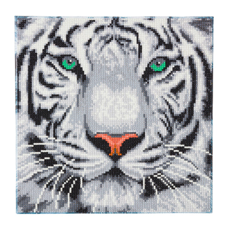 "CAK-A96M ""White Tiger"" 30 x 30cm (Medium)"