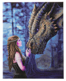 "CAK-AST5: ""Once Upon a Time"" 40 x 50cm (Large) - Anne Stokes"