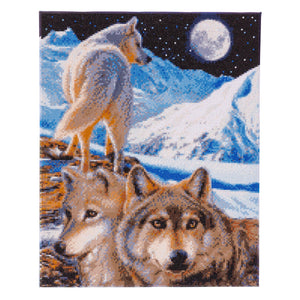 CAK-CH2: The Sentinel Wolves by Claudia Hahn 40 x 50cm (X-Large)