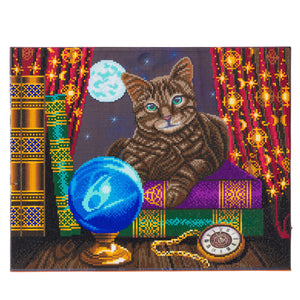 "CAK-XLED17 ""Fortune Teller"" Framed LED Crystal Art Kit - 40 x 50"