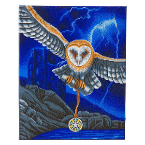"CAK-XLED18 ""Heart of the Storm Owl"" Framed LED Crystal Art Kit - 40 x 50"