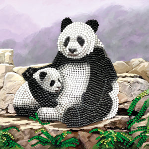 "CCK-A44 ""Panda"" Crystal Card Kit"