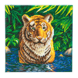 "CAK-A74: ""Tiger Pool"" 30 x 30cm (Medium)"