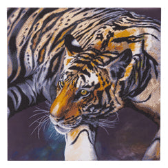 CAK-CH1: The Tiger by Claudia Hahn 70 x 70cm (Super Sized)