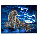 "CAK-XLED9 ""Aurora Family"" Framed LED Crystal Art Kit - 40 x 50"