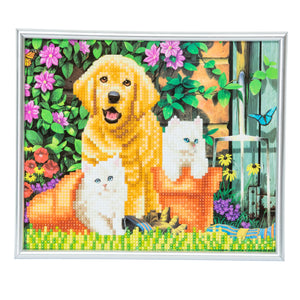 "CAM-11: ""Cat & Dog"" Crystal Art Picture Frame Kit, 21 x 25cm"