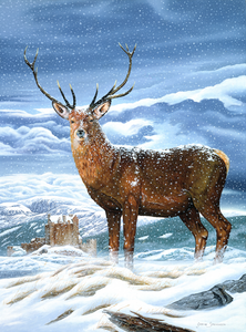 "CAM-8: ""Royal Scot Stag"" Crystal Art ""Gallery Collection"" Kit, 21 x 25cm"