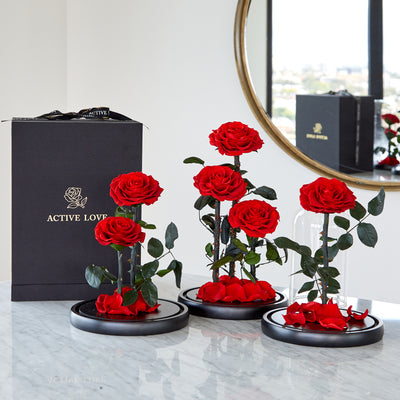 Red Enchanted Rose Domes