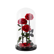 Red Enchanted Rose