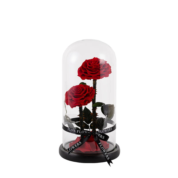 Red Enchanted Rose Dome