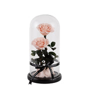 Pink Enchanted Rose Dome