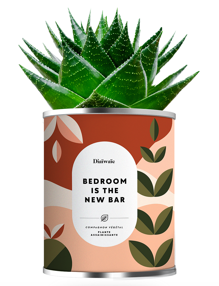 BEDROOM IS THE NEW BAR