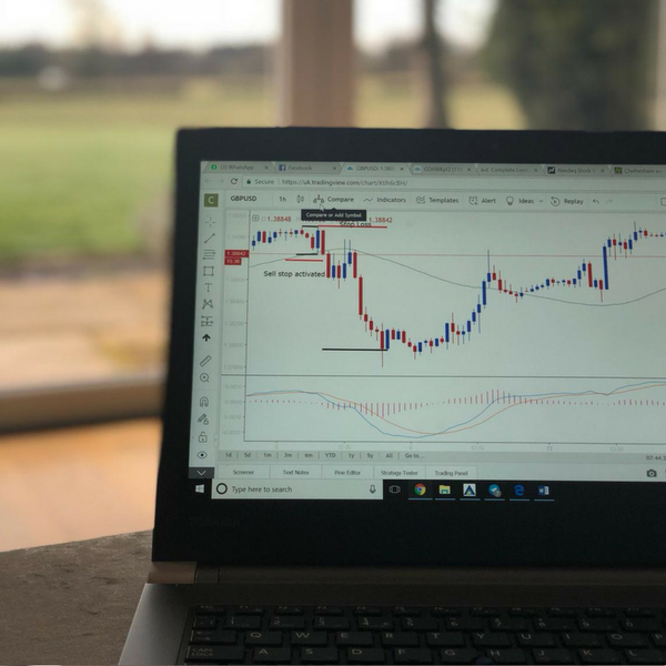 Online Forex Course