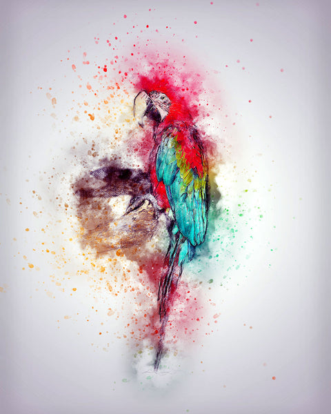 Expressive art for home or office - parrot