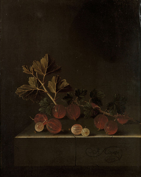 Gooseberries Adriaen Coorte with Signature