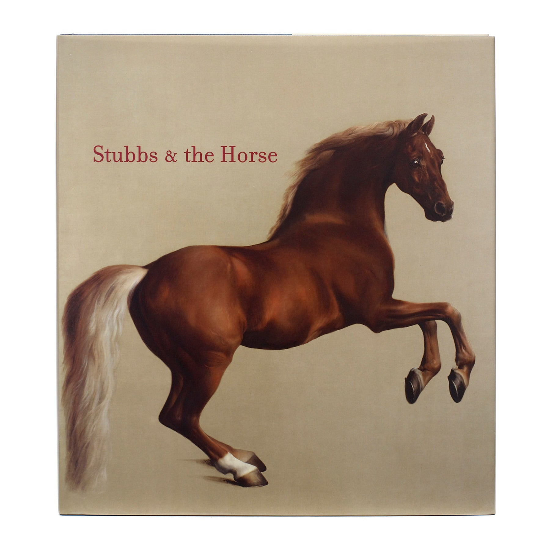 Stubbs and the Horse