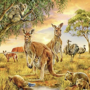"5D diamond paintings - 1 only local stock ""Kangaroos"" Full square"