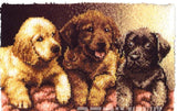 "Latch hook DIY rug kit ""3 dogs"" approx 85x60cm"