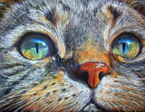 "5D Diamond embroidery mosaic full square ""Cat face"" - Scrap n Patch"