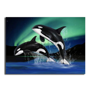 "5D DIY Diamond embroidery Painting Kits -Full Square / Round :Killer Whales"" - Scrap n Patch"