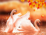 "5D DIY Diamond Embroidery Painting  Full Square Drill ""White  Swans"""