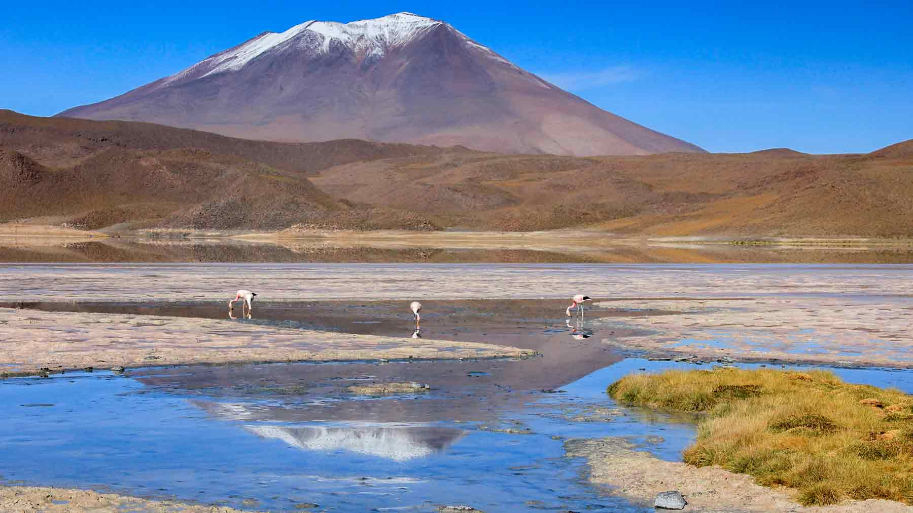 Eduardo Avaroa National Park Bolivia mountain reflections flamingos