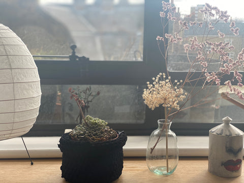 Indoor pot plant on window sill with hand crocheted cover