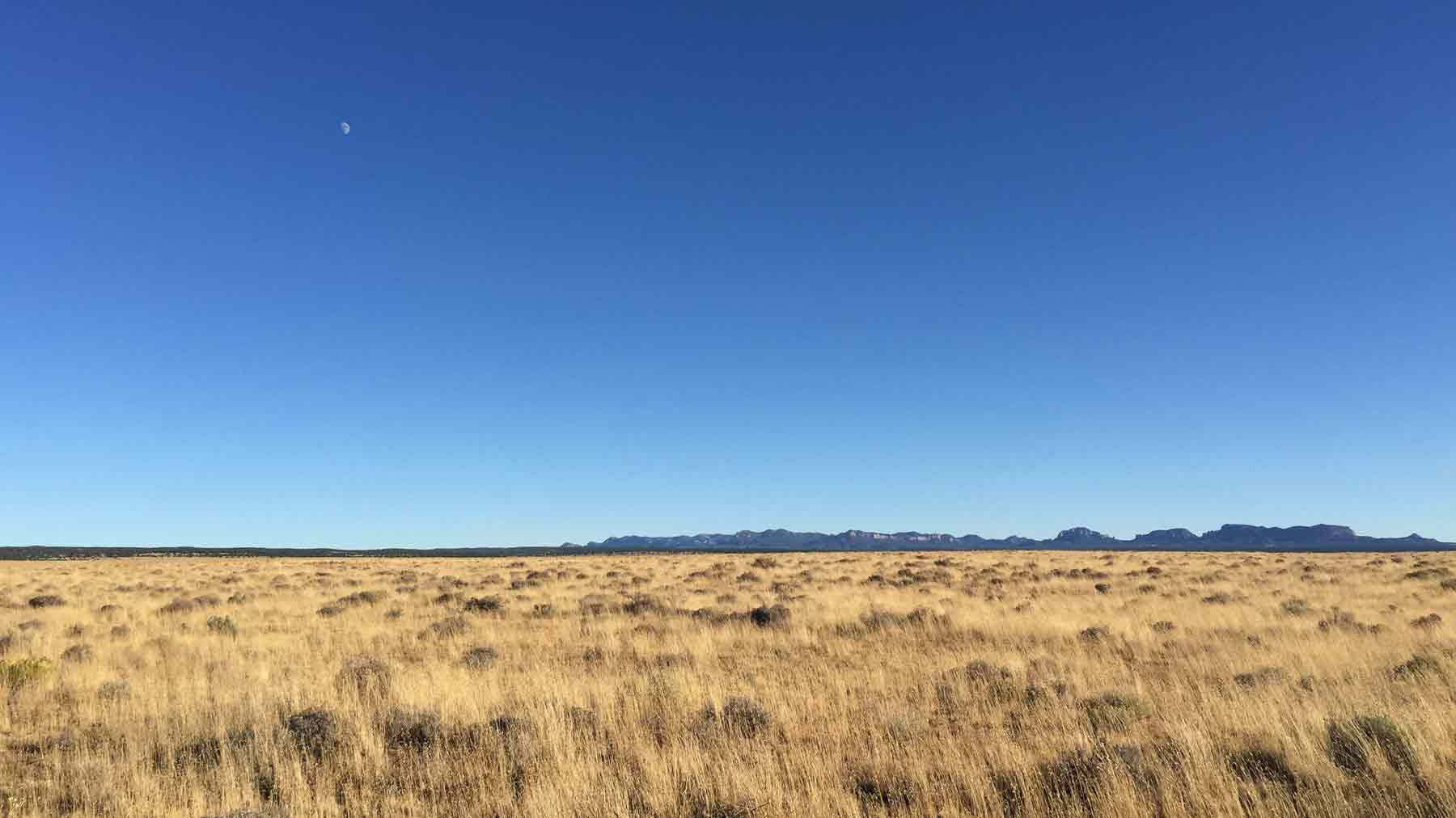 View of a dry grassy field towards distant mountains near the Lightning Field art installation in New Mexico