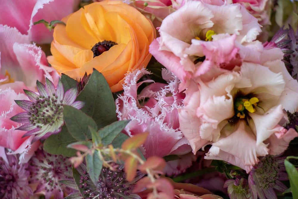 The Asmuss summer floral inspiration. A close up of a beautiful modern bunch of flowers