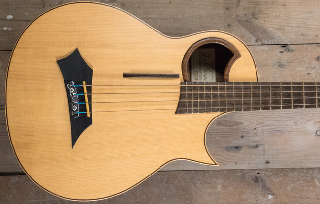 Warwick Alien Acoustic