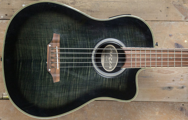Aria AMB-50B/5 - The Bass Gallery